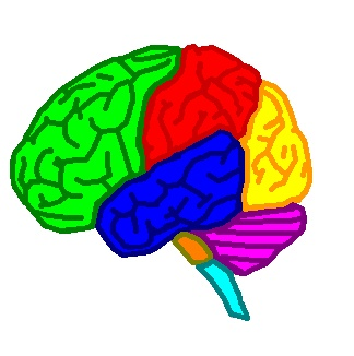 brain-logo-scientific-party-of-sweden
