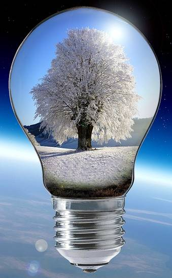 Bild på glödlampa med frostigt träd över planeten