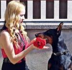 Kvinna som får en ros av en hund